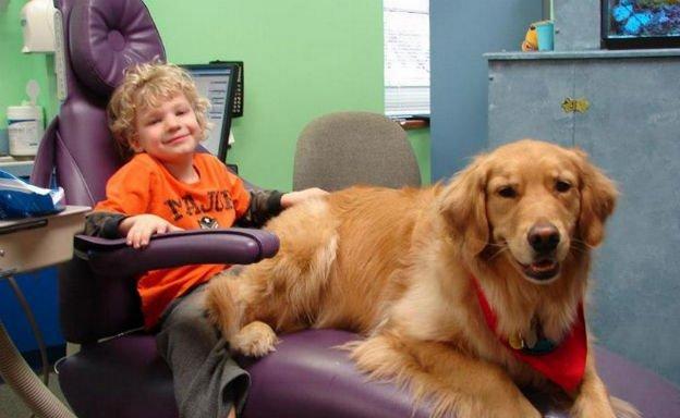 con il cane dal dentista
