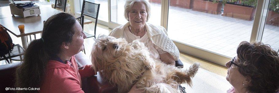 cane-da-pet-therapy_web