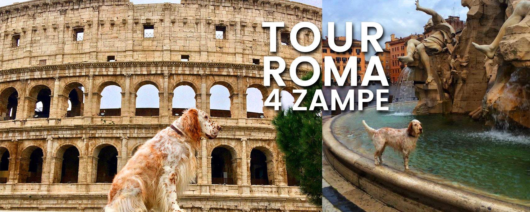 tour roma 4 zampe