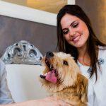Bibione: vacanze in hotel per cani