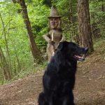 Itinerario trekking con un cane: Sentiero Spirito del Bosco in Lombardia