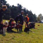 Una giornata alla Scuola Italiana Cani da Salvataggio – SICS