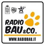 radio-bau