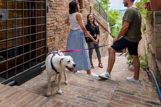 Visita-guidata-nel-borgo-medievale-di-San-Miniato-con-un-cane