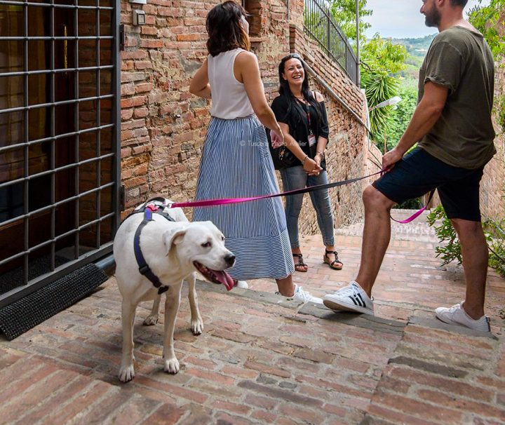 Guided-tour-in-the-medieval-village-of-San-Miniato-with-a-dog