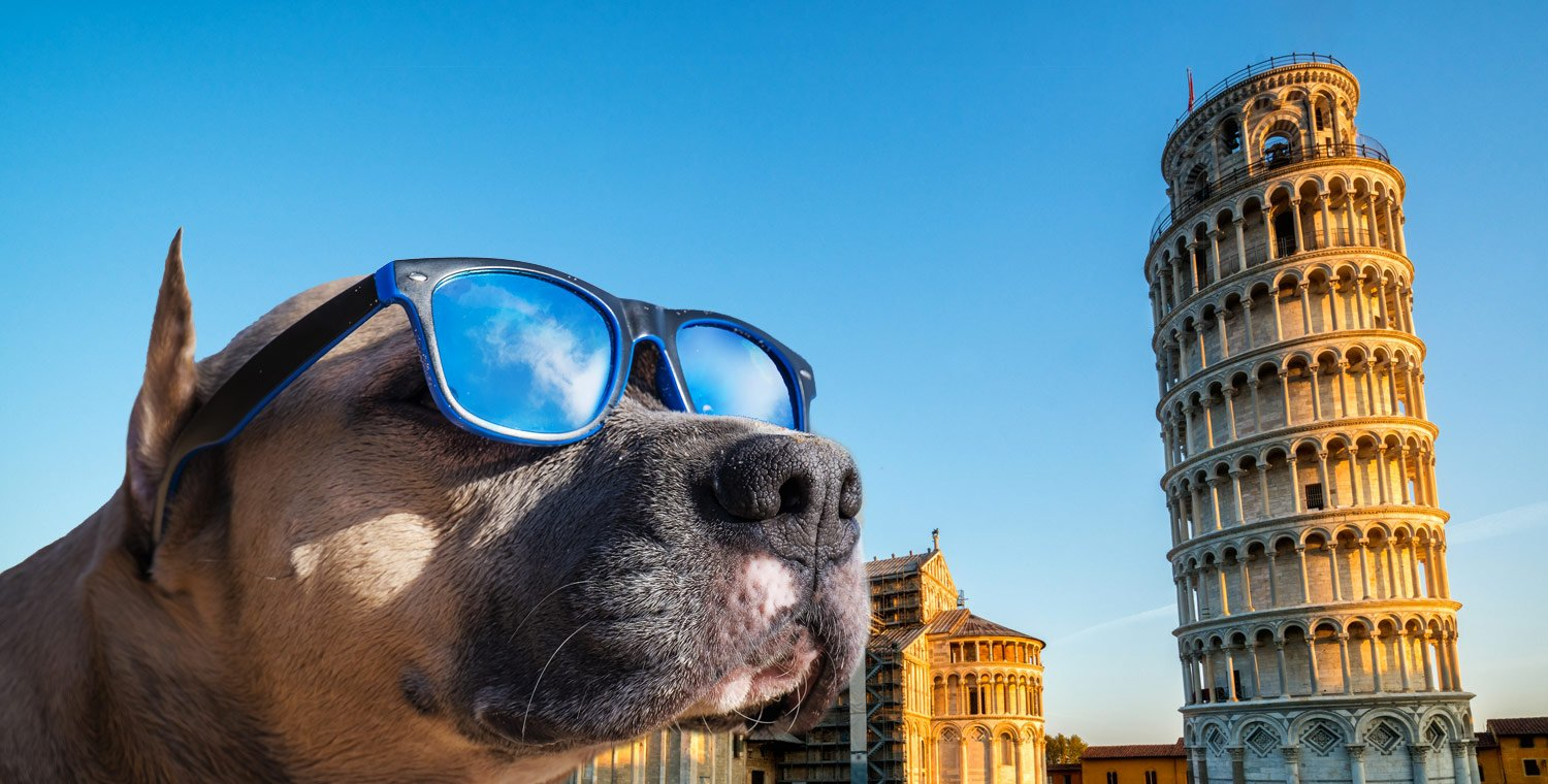 torre-di-pisa-with-a-dog-skip-the-line