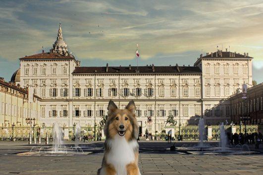 Musei-Reali-di-Torino-con-un-cane-e-audioguida