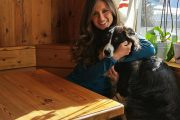 Dog-Camp-Dolomiti-Trentino-Alto-Adige-4-zampe_sala_ristorante_dog_friendly