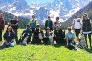 Dog-Camp-Dolomites-Trentino-Alto-Adige-4-legged