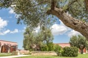 BauTour-in-Puglia-with-a-dog-a-week-between-taste-nature-and-culture