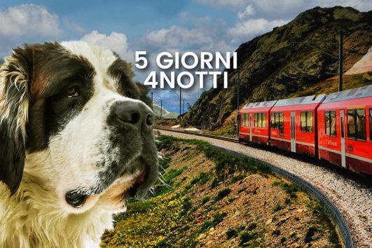 Trenino-rosso-del-bernina-con-un-cane-5-giorni