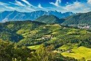dog-trekking-cuccioli-valle-del-curone-lombardia_6-2021_2