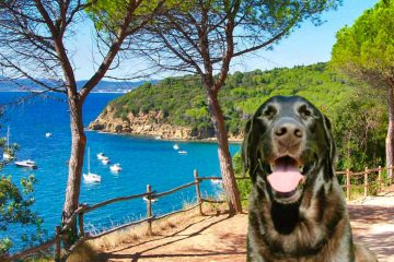 WoofTour on pack for the Coastal Path from Scarlino to Cala Violina
