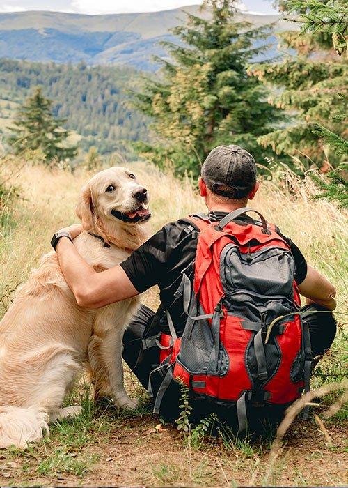 Reiserouten-mit-dem-Hund-Tour