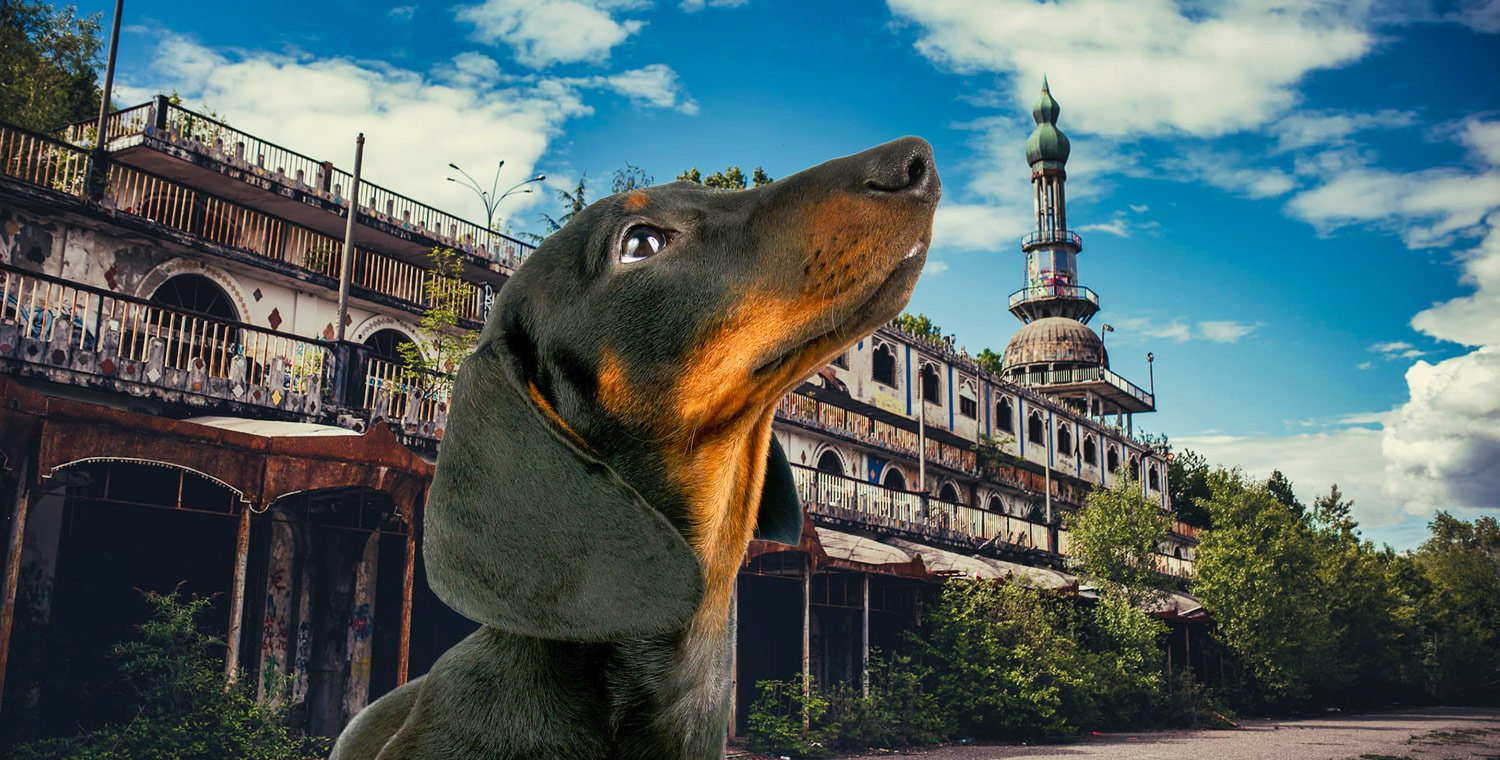 6-legged-treasure-hunt-in-the-ghost-town-of-Consonno-LC