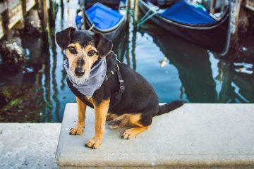 Private-BauTour-in-Venice-with-gondola-ride
