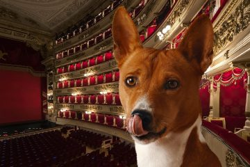 BauTour-al-Teatro-alla-Scala-of-Milan-with-a-dog + dog sitter + audio guide