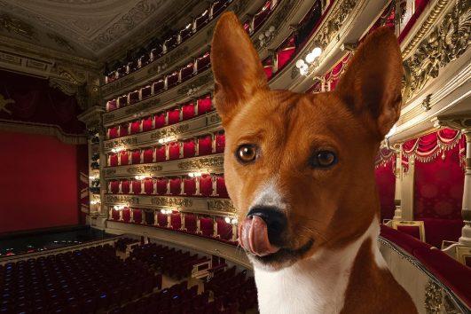BauTour-al-Teatro-alla-Scala-di-Milano-con-un-cane+dogsitter+audioguida
