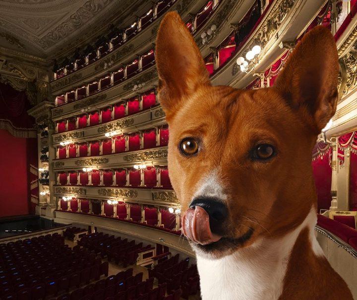 BauTour-al-Teatro-alla-Scala-von-Mailand-mit-Hund + Hundesitter + Audioguide