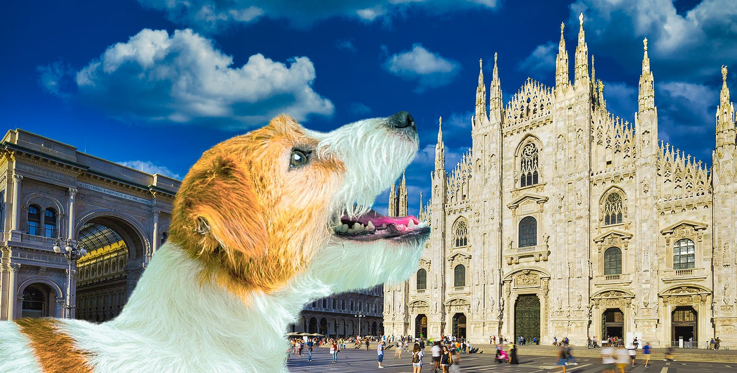 Visit-to-the-Duomo-of-Milan-the-terraces-and-archaeological-area-with-a-dog-with-dog-sitter